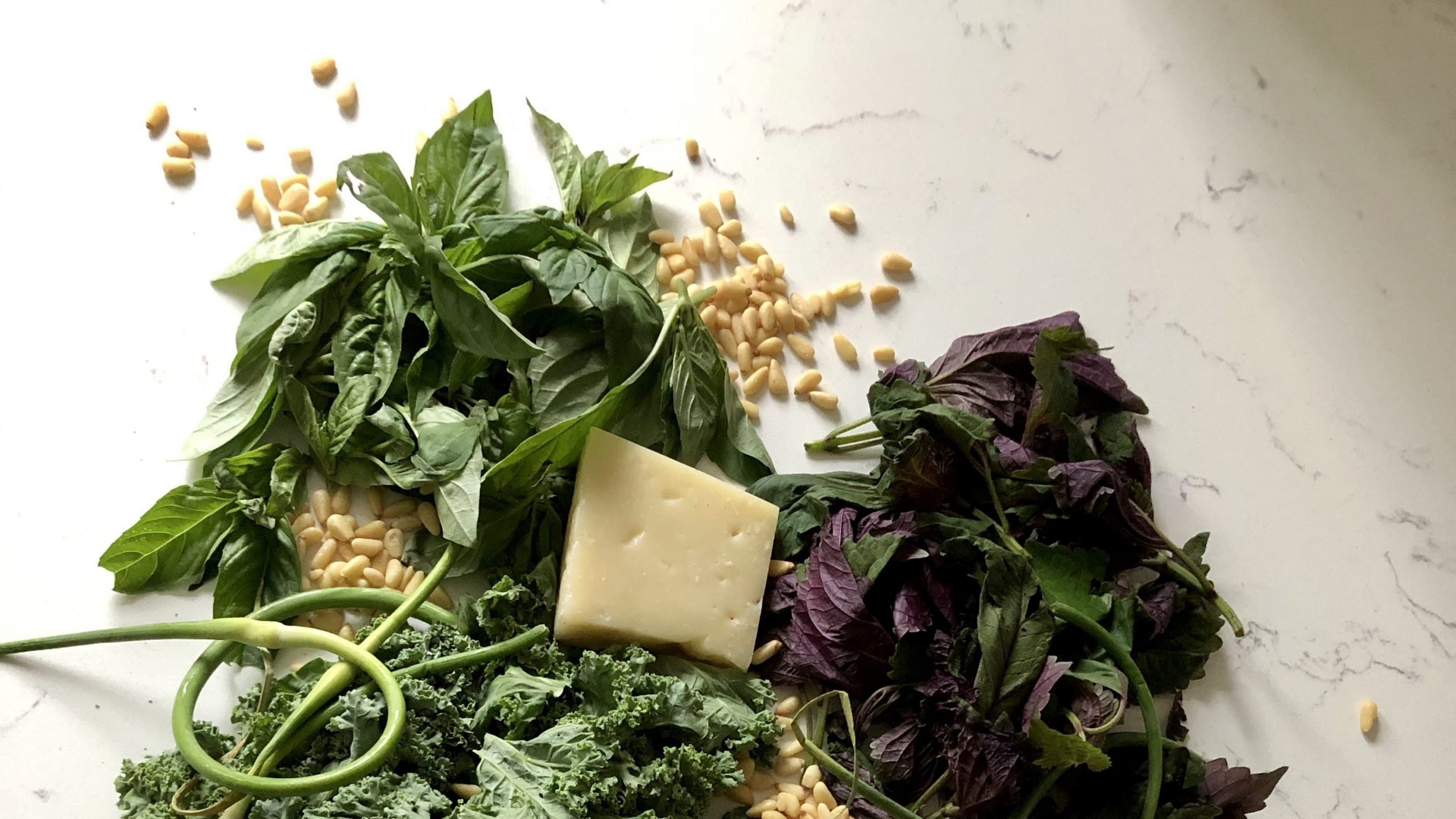 Greens, pine nuts, cloves of garlic, parmesan cheese, and garlic scapes sitting on the counter.