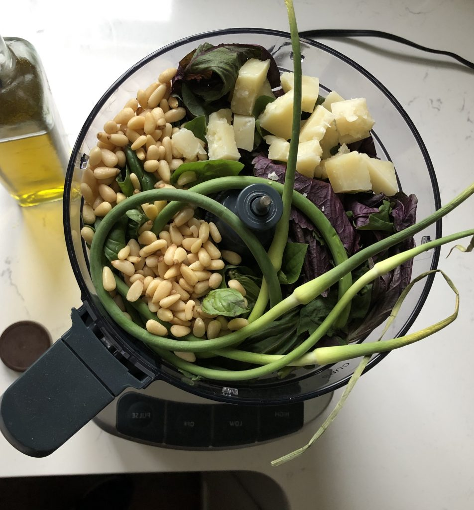 Shiso, pine nuts, basil, parmesan cheese and garlic scapes sitting in a food processor ready to be whizzed up.